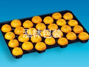 28枚水果托盘
