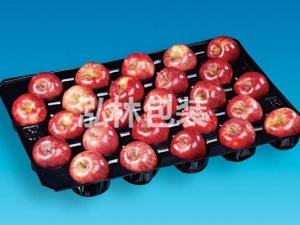 25枚水果托盘
